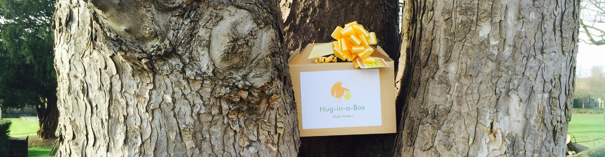 Hug-in-a-Box©